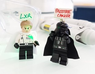 Prostate Cancer; LXRs strike back !